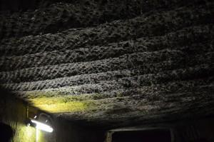 室岩洞(ジオポイント)