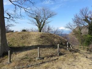 古墳からの富士山