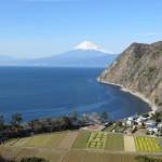 井田からの富士山