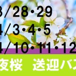 yozakura2015pop