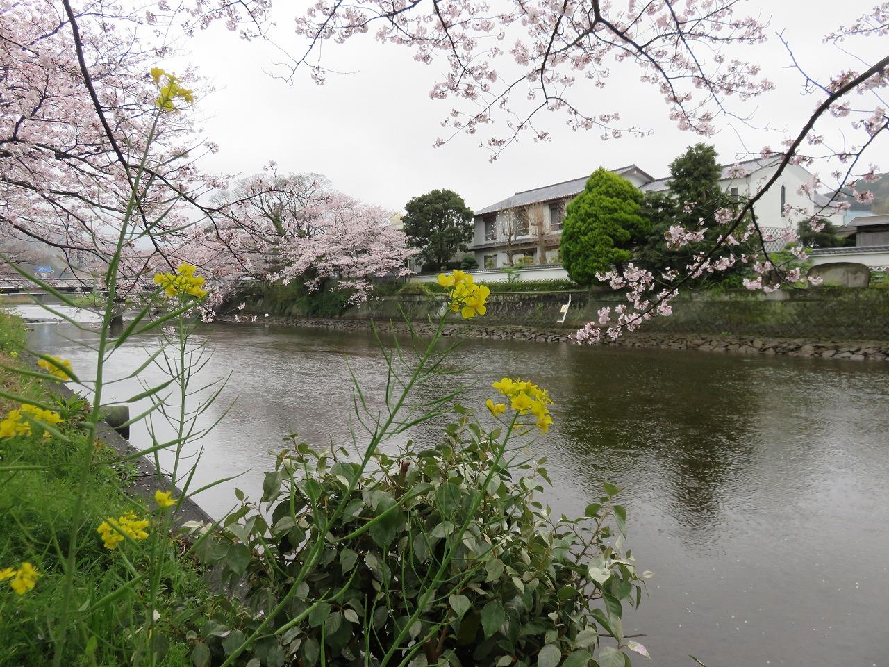 那賀川の流れ