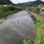 那賀川の釣り