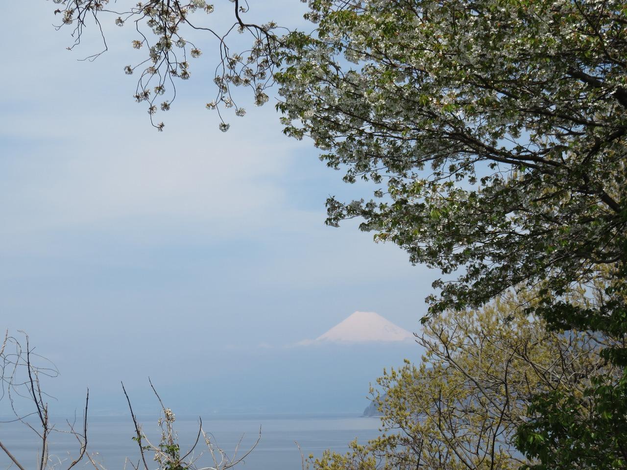 出丸からの富士山