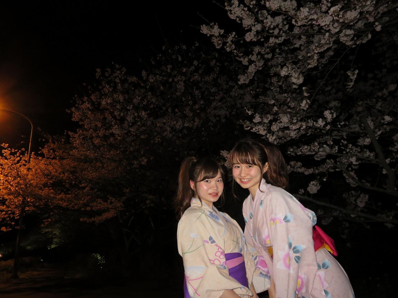 夜桜見物3