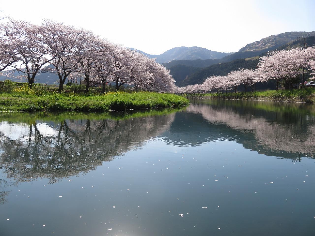 朝の那賀川
