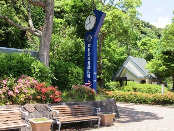 敷根公園6