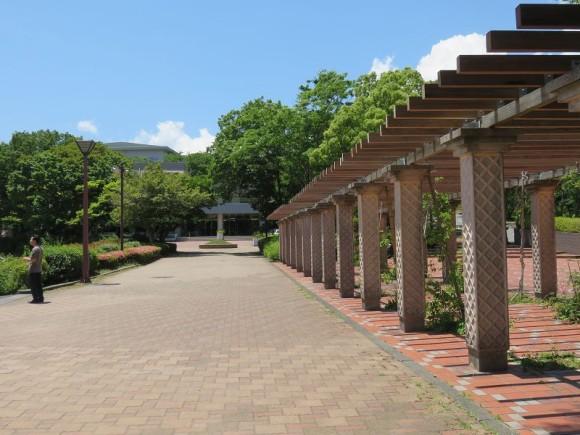 敷根公園4