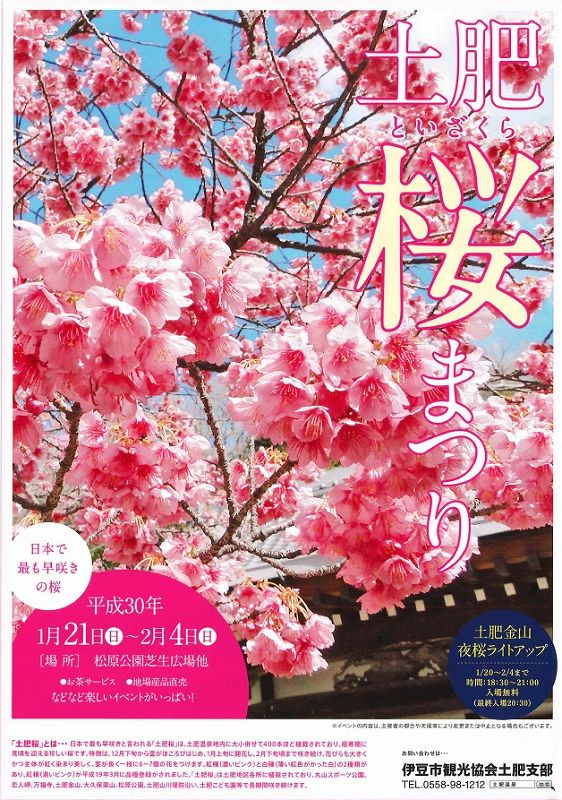 toi-sakura