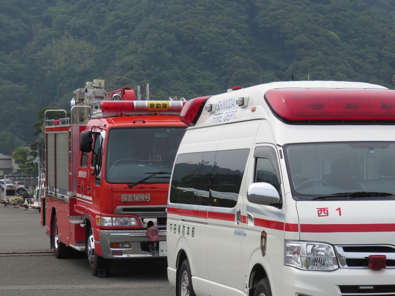 車の運転気を付けて!   伊豆半島ジオパーク ジオガイドsano ブログ
